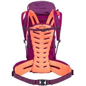 SALEWA Alptrek 38 Backpack Women dark purple
